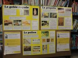 Livre fou 2013 : Abeilles et Cie