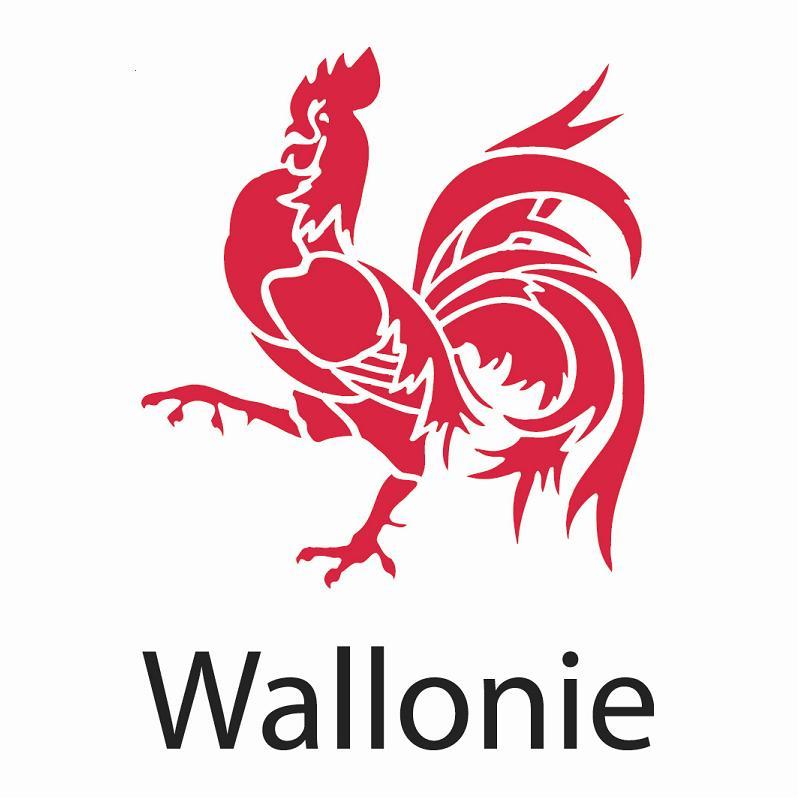 logo_Wallonie.JPG